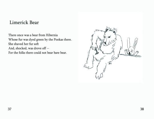 "No.16 ""Limerick Bear"""