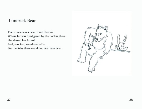"No.16 ""Limerick Bear"""